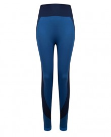 LADIES SEAMLESS PANELLED LEGGINGS TL350 07.TO.1.P30